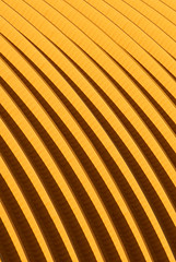 Yellow (Katka S.) Tags: roof abstract yellow architecture pattern vivid czechrepublic topic bulding linescurves paperworks plze flickrsbest golddragon abigfave platinumphoto colorphotoaward bukovec abstractartaward goldstaraward obliquemind obliquamente paprna fotocompetition fotocompetitionbronze fotocompetitionsilver