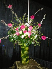Large Centerpiece (Megan Cannon) Tags: pink roses green sticks gerbera daisy apples twigs lillys bridalshowapril2008