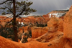 Bryce Canyon, Utah (reddirt791/Bradley Cox) Tags: utah brycecanyon
