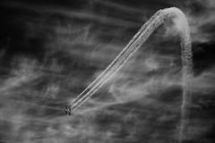 (Shemer) Tags: sky bw plane airplanes nb planes independenceday shemer  aerialdemonstration   shimritabraham