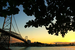 Bridge and Sunset (Renata Diem) Tags: bridge floripa sunset pordosol florianpolis ponte pontehercilioluz 4sfgf