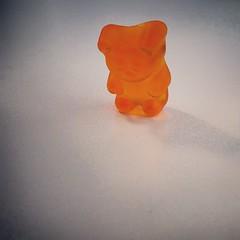 The Last Gummy Bear (BenRogersWPG) Tags: bear shadow favorite food orange macro last germany amazing funny sad candy samsung tasty sugar note delicious foodporn galaxy german depressed syrup lonely awww shape gummybears gel android assorted morose gummy depressing confection bulk despondent glucose gummybear the starch gelatin thelastone bulkbarn instagram samsunggalaxynote vision:clouds=0948 vision:sky=0939 thelastgummybear