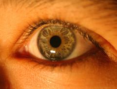 el ojo de la tamy