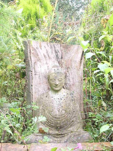 Padmaloka garden buddha