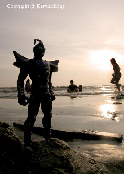 Beach-Guardian