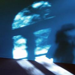 blue spirit (brancolina) Tags: shadow shadows ombra sombra rhizome singintheblues platinumphoto diamondclassphotographer hourofthediamondlight top20everlasting top25blue brancolina