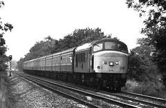 45106 climbing Lickey with 1100 Paignton - Newcastle (29-08-1987) (koyli22) Tags: rail loco class 45 british peaks hauled
