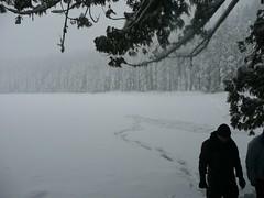 Lower lake (bzo) Tags: oregon twinlakes