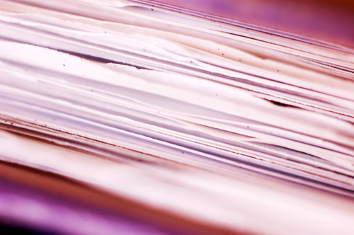 Purple Folder - 3