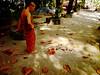 .| _ (AraiGodai) Tags: dog temple interesting monk explore araigordai raigordai araigodai