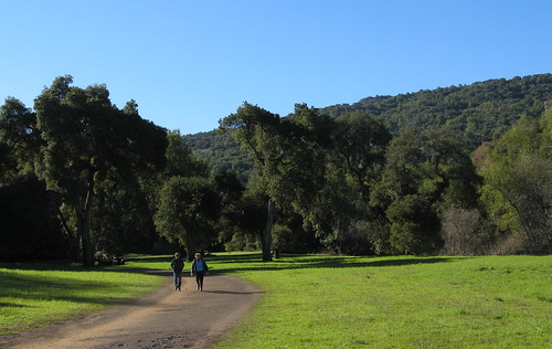 Morning at Rancho San Antonio County Park