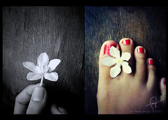 the obedient flower (thresca) Tags: flower feet redpolish