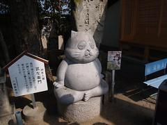 洲本八狸の1つ@厳島神社