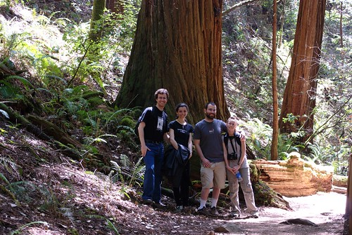 Muir Woods with Taryn & Joe