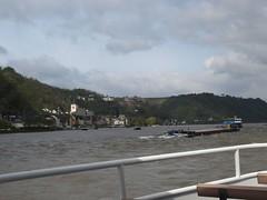 Rhine River Apr 08 042 (MurphMutt) Tags: castle germany rhineriver