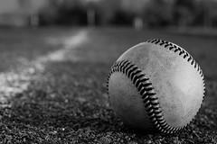 baseball for baby bob