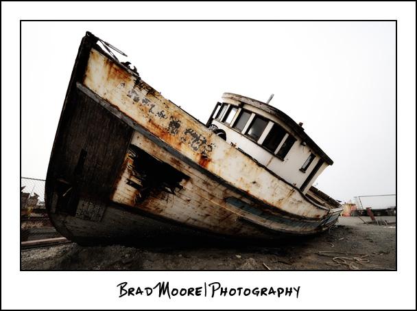 Redwoods_Shipwreck