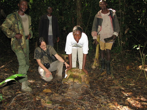 A.T. with an elephant poached by Thom's group
