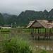 A lake in Vieng Xai