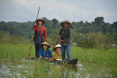 Women living in wetlands in Lao PDR play crucial in ensuring a sustainable use of the wetlands (FAO of the UN) Tags: fao unfao dimitra radio gender rural