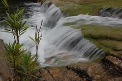 pantaleo (calabromassimo) Tags: sardegna nikon cascata sulcis boschi pantaleo santadi concordians calabromassimo