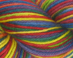 Bright Rainbow on Peruvian Wool - 100g (WW)