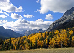 Mother Nature's Masterpiece (njchow82) Tags: autumn trees canada mountains nature clouds landscape scenic alberta colorsoffall kananaskiscountry anawesomeshot almostanything naturescreations njchow82
