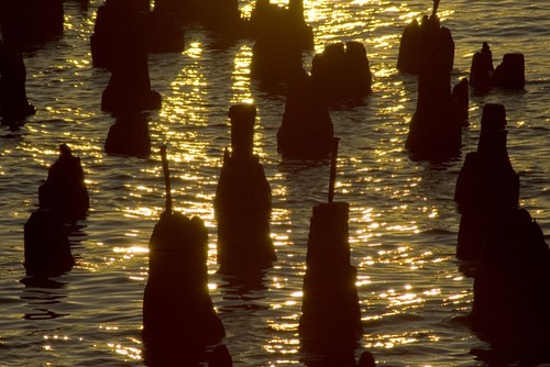 breakwater close-up at dawn.jpg