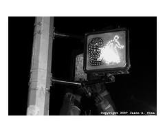 Photo Class (jason a. cina) Tags: street new york nyc school girls boy portrait urban newyork boys students girl closeup kids youth portraits children photography kid student faces harlem photographyclass class childrens zone 125thstreet youths urbanyouth hcz harlemchildrenszone geofferycanada jasoncina promiseacademy jasonacina jccina harlemkids