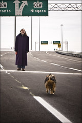 On Sunday Afternoon ... (KennethMoyle) Tags: dog pets toronto dogs highway hamilton niagara poppy redhill qew lightroom 51000 imagemagick hamiltonontario queenelizabethway redhillvalley redhillparkway
