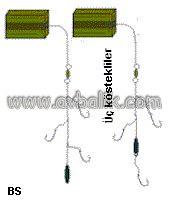 2055436770 47ac4317a8 m mercan balığı nasıl avlanır