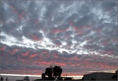Morning Sky, 12/12/07