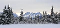 Im Isarwinkel (Claude@Munich) Tags: winter mountain snow alps germany geotagged bayern deutschland bavaria isarwinkel berge alpen karwendel wallgau claudemunich ostalpen geo:lat=475417 geo:lon=11353608