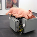Paul McCarthy : Mechanical Pig (2005)