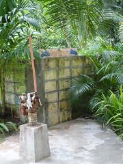 P1000807 (Brett Porter) Tags: philippines bohol panglao amarela