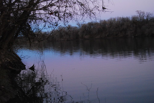 Twilight On The River