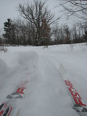 POV on the Murphy's Point ski trail