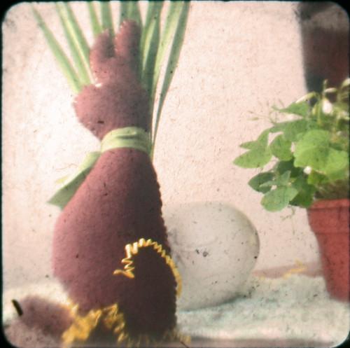 e-bunny ttv