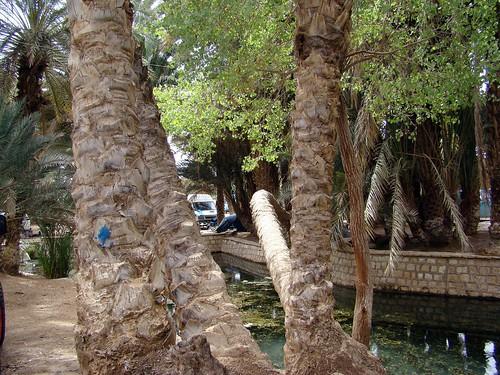 MERZOUGA-SAHARA-2008-SONY 218
