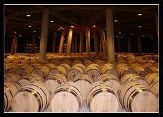Balneario Vincola (Itotti69) Tags: wood madera floor wine paz silence bodega terra pau rioja fusta vi silencio vino botas suelo silenci quietud cune views25 soterrani