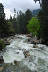Yosemite National Park (Yang and Yun's Album) Tags: california ca usa nikon yosemite nikkor  nikk   d80