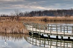 Crosswind Marsh 2-65 (dragos.tranca) Tags: crosswinds marsh michigan canon 70d sigma 30mm f14 art bridges hdr landscape