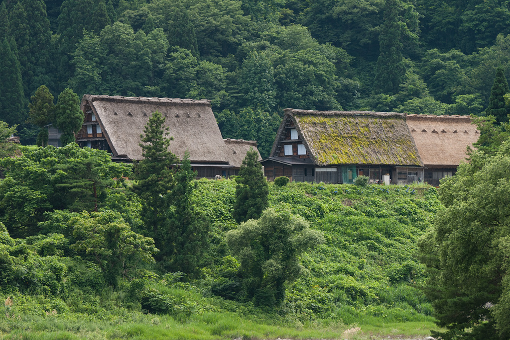 Shirakawa-go Historic Village by DMC-G1 (7)