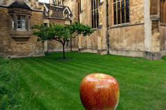Newton's Apple
