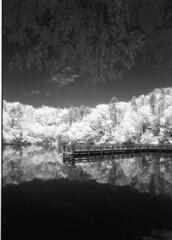 the pier  infrared (J. Golden) Tags: efke ir820
