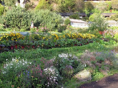 The Esalen Gardens
