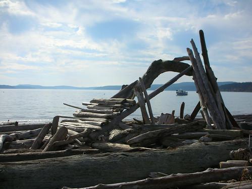 110-Lopez Sound Driftwood