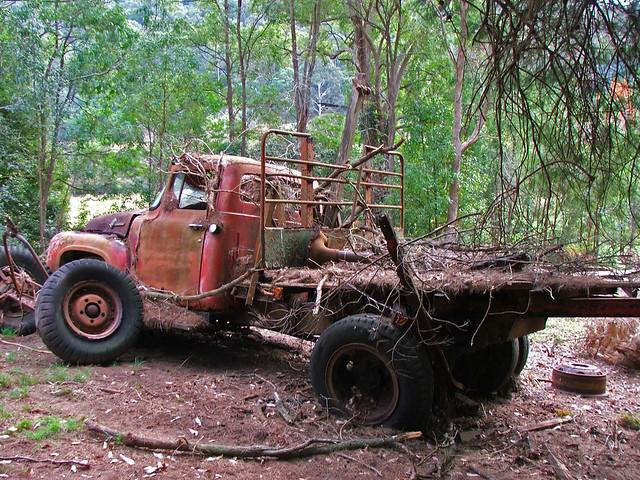 ford truck f rusted series nswaustralia newsouthwalesaustralia yarramalongnsw imagefocus imagefocusaustralia rossbeckley