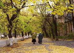 Old Friends (fromBrandon) Tags: trees cold fall leaves yellow canon europe bright russia fallcolors painted ukraine elderly labs former eastern easterneurope ussr mariupol a620 optikverve