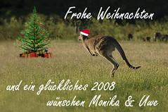 Frohe Weihnachten (fotouwe) Tags: christmas nikon d70 australia kangaroo merrychristmas weihnachtskarte weihnachtsgrse neujahrswnsche fotouwe wwwmeiervisionde